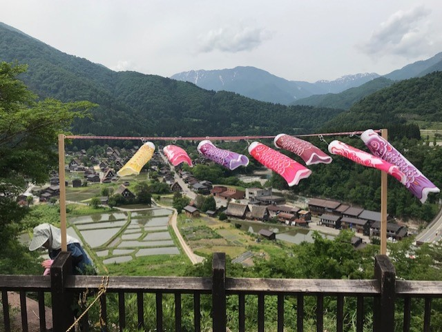 Shirakawa-go Villiage and Rice Fields